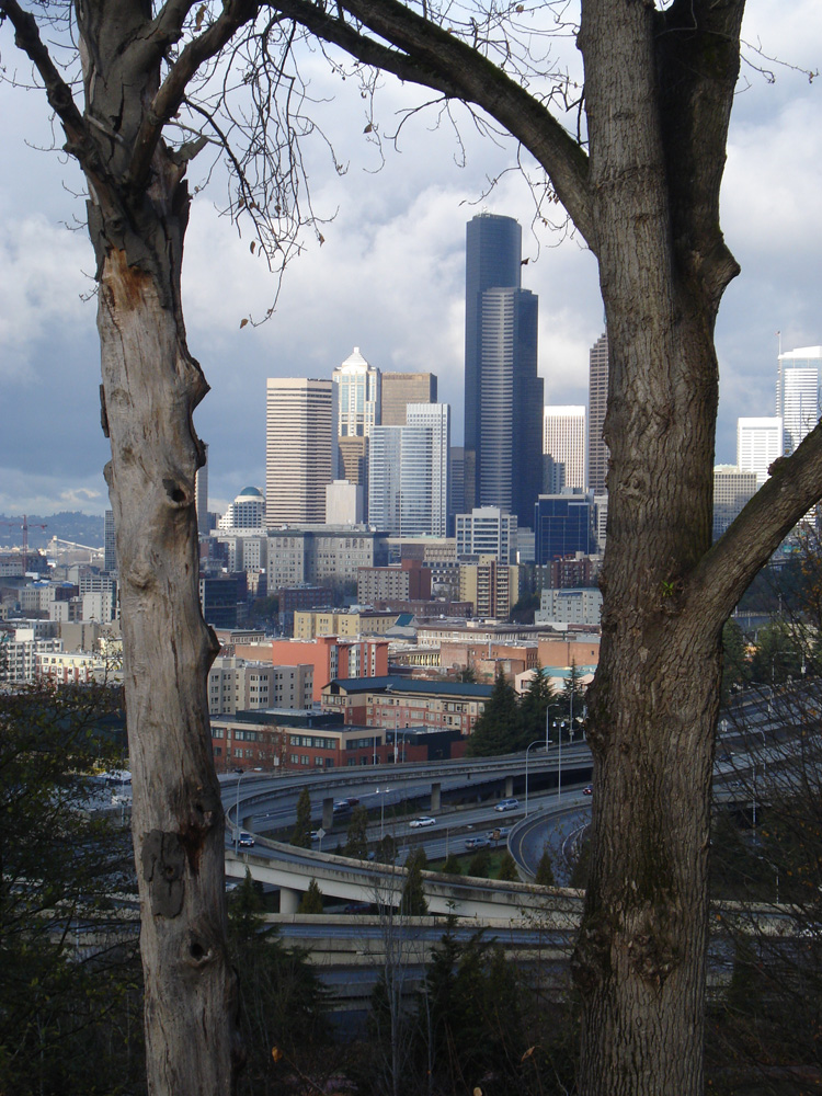 View of downtown from Jose Rizal park on Beacon Hill