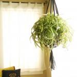 Tutorial: Inner tube plant hanger